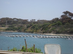 Carlsbad Aquafarm. Photo by Betsy Suttle