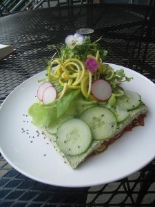 "Raw ""lasagna"" from Luna's Living Kitchen. Photo by sonya nuri"
